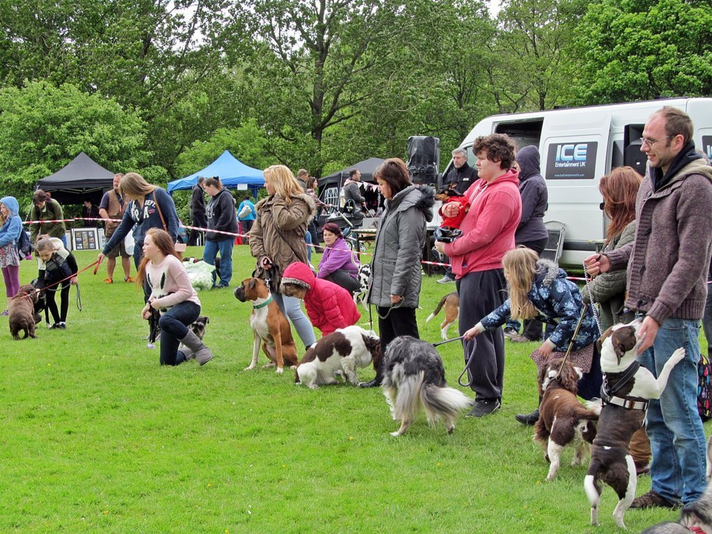 Dogs being presented at the 2015 Barking Berry's Fun Dog Show