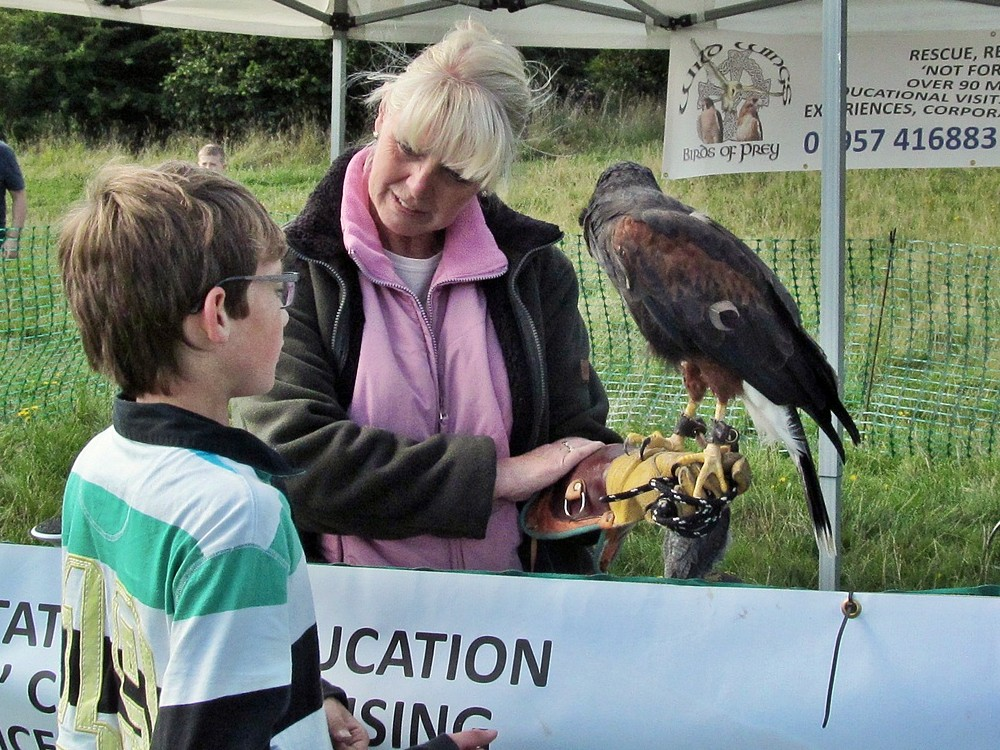 Birds of Prey at Friends of Eatock Lodge Funday 2015.